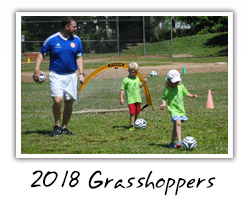 2018 Grasshoppers