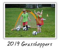 2019 Grasshoppers